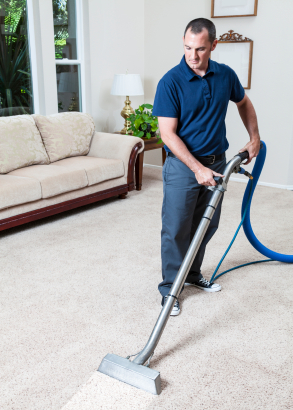 carpet cleaning free estimate my carpet